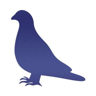 Güvercin Bileziği