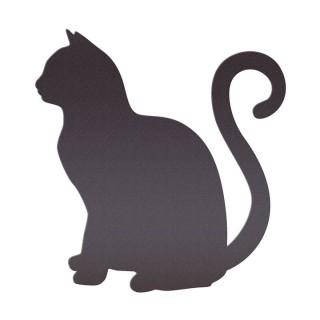 Kedi / Köpek